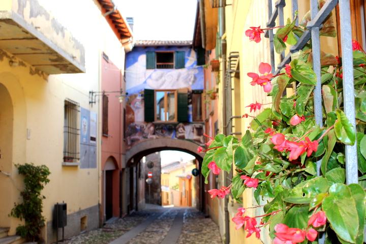 Dozza- a beautiful street